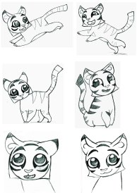 tiger cubs sketches profiles